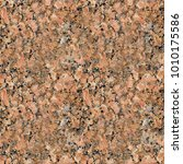seamless granite texture... | Shutterstock . vector #1010175586