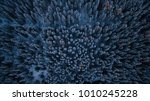 aerial view of winter forest... | Shutterstock . vector #1010245228