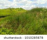 earthy embankments near the...   Shutterstock . vector #1010285878