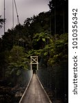 Small photo of Hiker's empty suspension bridge in tropical jungle in Abel Tasman National Park in New Zealand.