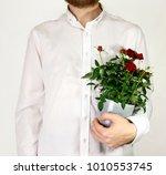 man's hand hold a flower pot... | Shutterstock . vector #1010553745