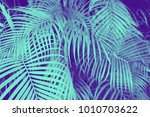 trendy design  nature and... | Shutterstock . vector #1010703622