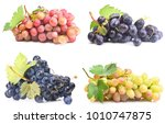 grapes on a white background | Shutterstock . vector #1010747875