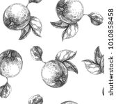 vector seamless pattern with... | Shutterstock .eps vector #1010858458
