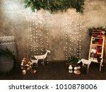 winter photo zone. winter... | Shutterstock . vector #1010878006
