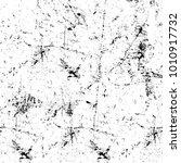 grunge black and white pattern. ... | Shutterstock . vector #1010917732