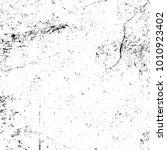 grunge black and white pattern. ... | Shutterstock . vector #1010923402