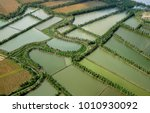 aerial view of paddy rice... | Shutterstock . vector #1010930092