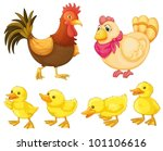 rooster  hen and chicks on white | Shutterstock .eps vector #101106616