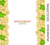 white currant fruit vertical... | Shutterstock .eps vector #1011124546