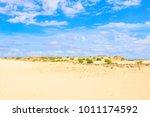 view of desert in boa vista ...   Shutterstock . vector #1011174592