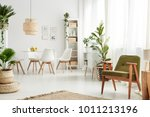 botanic dining room interior... | Shutterstock . vector #1011213196