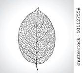 Black Macro Leaf Natural...
