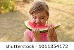 portrait of happy little girl... | Shutterstock . vector #1011354172
