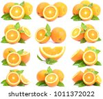 orange on a white background | Shutterstock . vector #1011372022