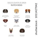 dogs by country of origin.... | Shutterstock .eps vector #1011427042
