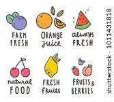 cute fruits badges. vector hand ... | Shutterstock .eps vector #1011431818