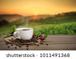 hot coffee cup with fresh... | Shutterstock . vector #1011491368