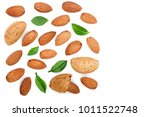 almonds with leaves isolated on ... | Shutterstock . vector #1011522748