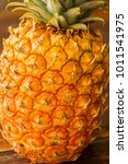 detail of a organic pineapple... | Shutterstock . vector #1011541975