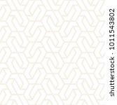 vector seamless subtle pattern. ... | Shutterstock .eps vector #1011543802
