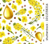 rape seeds and flowers  canola... | Shutterstock .eps vector #1011558316