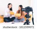 teamwork asian women freelancer ... | Shutterstock . vector #1011559072