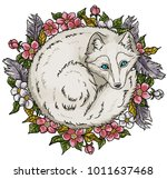arctic fox sketch | Shutterstock .eps vector #1011637468