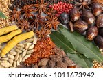 herbs and spices selection.... | Shutterstock . vector #1011673942