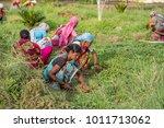amravati  maharashtra  india ... | Shutterstock . vector #1011713062