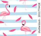 flamingo and pink feathers with ...   Shutterstock .eps vector #1011774418