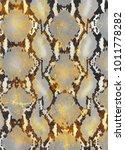 snake skin texture.  texture...   Shutterstock .eps vector #1011778282