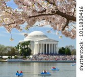 Jefferson Memorial During...