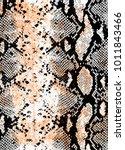 snake skin background | Shutterstock .eps vector #1011843466
