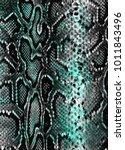 snake skin background   Shutterstock .eps vector #1011843496