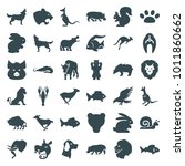 wildlife icons. set of 36... | Shutterstock .eps vector #1011860662