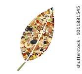 cute leaf shape logo from nuts  ... | Shutterstock .eps vector #1011881545