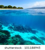 collage of underwater coral... | Shutterstock . vector #101188945