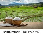 jasmine rice and steamed rice...   Shutterstock . vector #1011936742