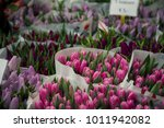 The Bunch Of Pink Tulips In Th...