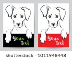 muzzle and paws of a dog with... | Shutterstock .eps vector #1011948448