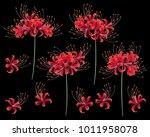 japanese style cluster... | Shutterstock .eps vector #1011958078