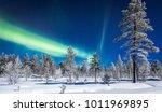 panoramic view of amazing... | Shutterstock . vector #1011969895