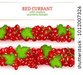 red currant fruit horizontal... | Shutterstock .eps vector #1012007326