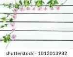 pink mini gerbera daisy. white... | Shutterstock . vector #1012013932