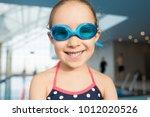 head and shoulders portrait of... | Shutterstock . vector #1012020526