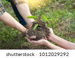 couple planting and watering a... | Shutterstock . vector #1012029292