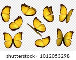 Stock vector butterfly vector yellow isolated butterflies 1012053298