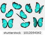 butterfly vector illustration.... | Shutterstock .eps vector #1012054342