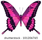 Stock vector vector iillustration of beautiful pink butterfly isolated on white background 101206765